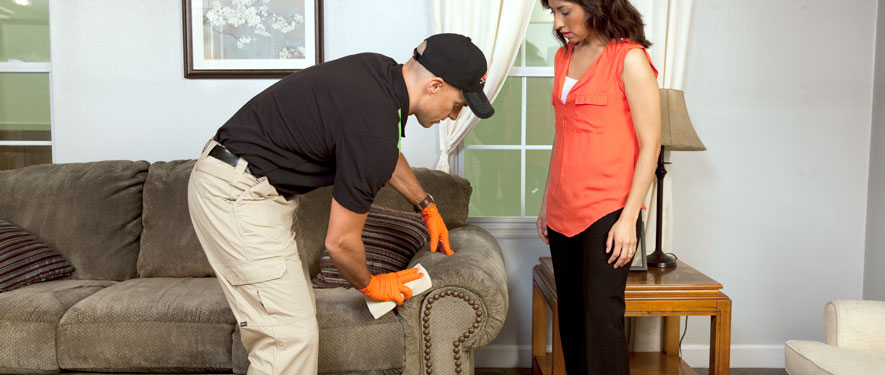 Lake Geneva, WI carpet upholstery cleaning